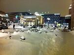 Luminen Helsinki odotti kotiinlähtijöitä